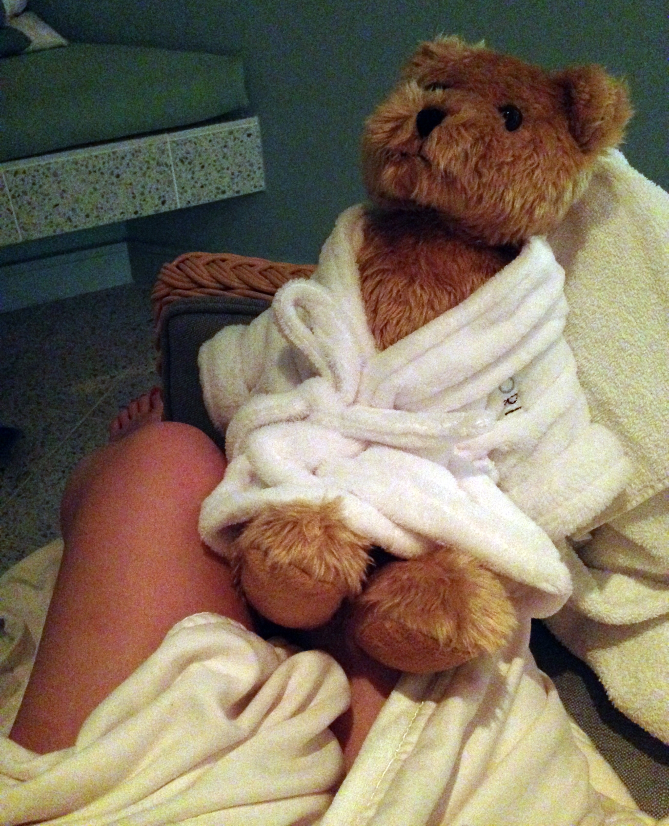 spa teddy